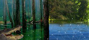 data lake data swamp