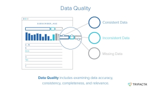 data quality image trifacta