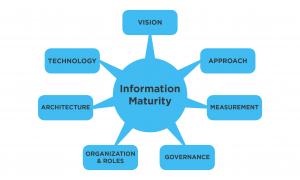 information maturity matrix graphic